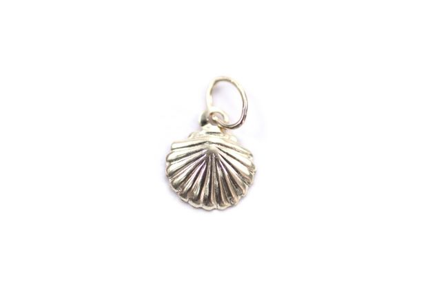 Gold Filled SeaShell